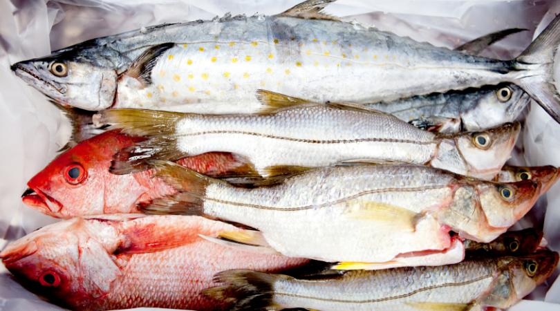 можно разморозить рыбу