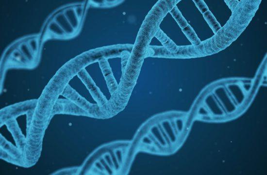 Нобелевская премия по химии: люди перестанут болеть и стареть?