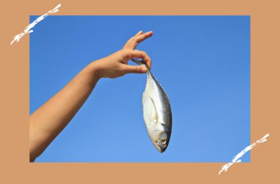Какая рыба самая полезная: рейтинг жирных богатырей